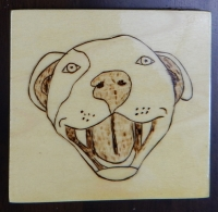 Pitbull SMILE Wooden Coaster